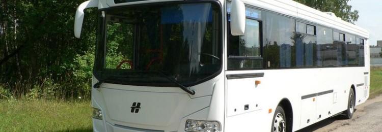 Автобус Брест-Варшава